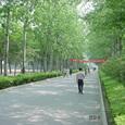 5月の北京市内の様子(2)